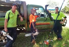 remote area tree services