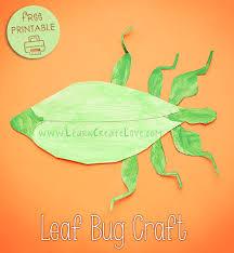 leaf bug printable craft