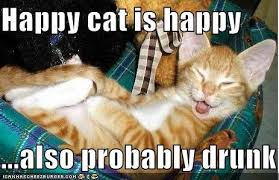 Happy Cat Meme - happy cat is happy also probably drunk cheezburger funny