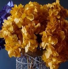 wholesale hydrangeas purple preserved hydrangeas available in bulk quantities from