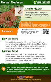 24 best gardening tips images on pinterest gardening tips how