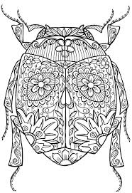 best free beetles insect coloring pages for kids printable