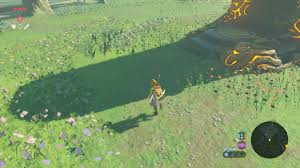breath of the wild guide hila rao shrine walkthrough and puzzle