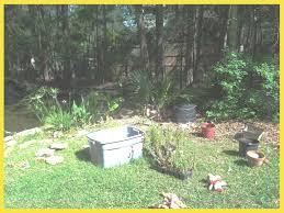 beautiful my big backyard vectorsecurity me