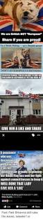 The Grand Union Flag 25 Best Memes About Union Flag Union Flag Memes