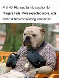 Tuesday Meme - tuesday meme dump october 3 2017 the tango