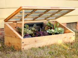 instructions for building a cold frame to protect plants from the