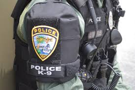communications careers u2014 cape coral police department