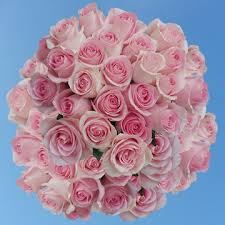 roses online luciano roses flowers for sale online global