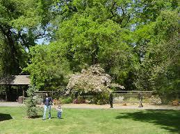 japanese garden www sjparks com portals 0 assets images parks japa