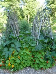 waterfall terraced garden smart easy ideas for hillside