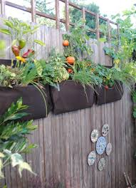 creative vertical gardening ideas bonnie plants