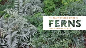 portland native plant list the plant lover u0027s guide to ferns the plant lover u0027s guides sue