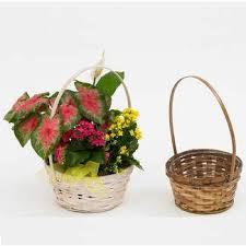 Accent Decor Inc 102 Best Accent Decor Images On Pinterest Accent Decor Floral