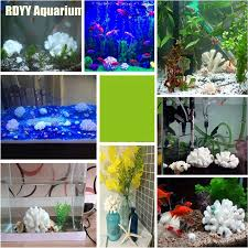 Beautiful Home Fish Tanks by Aliexpress Com Buy Natural White Round Coral Rare Beautiful Home