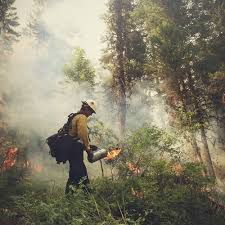 Wildfire Davis Ca by A California Hotshot Photographs His Life Fighting Wildfires Eyes