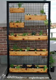 create this awesome herb wall on your own container gardening