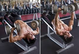 Is Decline Bench Press Necessary Chest Workouts For Lower Body Chest Fitness Powerup