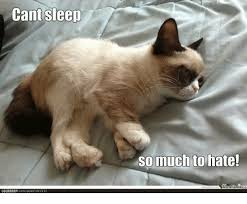 Grumpy Cat Sleep Meme - cant sleep lolbrarycomipost46153 so much to hate grumpy cat meme