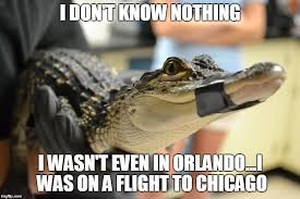 Alligator Memes - image tagged in alligator orlando disney scandal florida sunrise