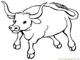 printable bulls schedule coloring pages of bulls bull coloring pages printable coloring pages