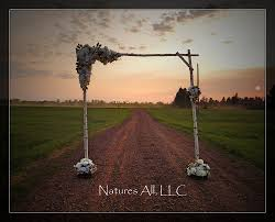 wedding arches etsy diy white birch wedding arch handmade