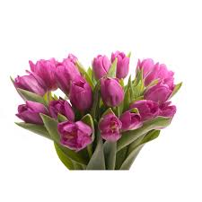 tulip bouquets purple tulip bouquet tulip bouquets gifts flower muse