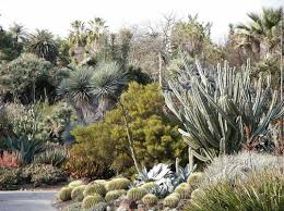 Botanical Gardens Huntington Top 5 Awesome Los Angeles Botanical Gardens Inhabitat Green