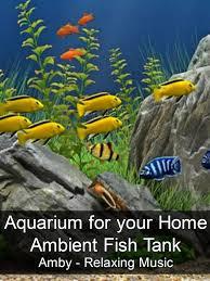 amazon com aquarium for your home ambient fish tank amby