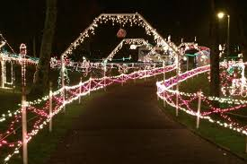 christmas lights franklin tn twinkling tennessee christmas gray line of tennessee nashville