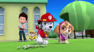 marshall paw patrol action hall fame