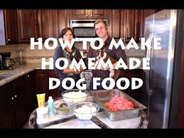 dino vite dog food