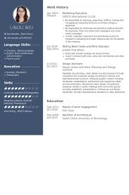 modern resume exles for executives marketing executive resume sles visualcv resume sles database