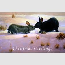 christmas cards u2013 5 or 10 pack rabbits kissing 18 x 12cm u2013 coleman