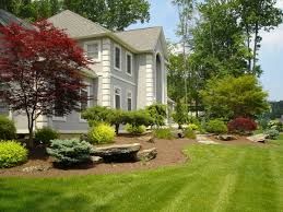 front yard and backyard formal natural or contemporary