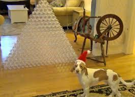 best dog gift ever dog receives 210 bottles for christmas cute
