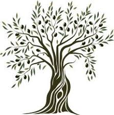 best 25 olive tree tattoos ideas on olive branch
