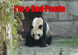 Sad Panda Meme - image 63387 sad panda know your meme