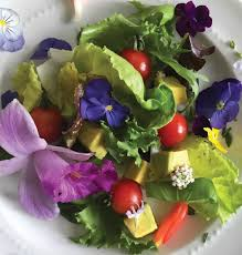 edible flower garnish edible flower power a recipe for floral cubes ke ola magazine