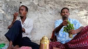 Teh Arab polda jabar sita teh arab narkoba jenis baru viva