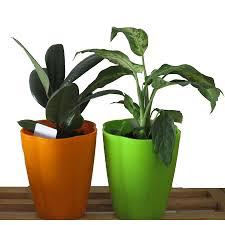Self Water Pot Supply Self Watering Pot Indoor Deco Pot Plastic Flower Pot Buy
