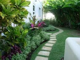 Tropical Landscaping Ideas by Best 25 Tropical Backyard Landscaping Ideas On Pinterest