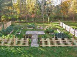 first time garden in the backyard lots of raised beds portable