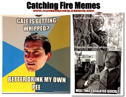 catching fire memes hungergames stuff pinterest meme