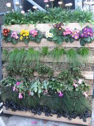 40 best gardening with pallets images on pinterest pallets