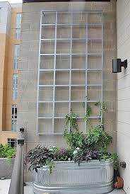 Garden Trellis Design by Best 25 Wall Trellis Ideas On Pinterest Trellis Diy Garden