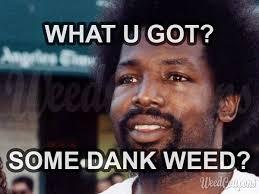 Smokers Meme - weed memes funny marijuana and pot pics high guy meme