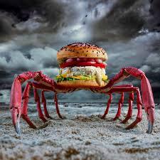 cuisiner araign馥 de mer araign馥 dans la chambre 47 images araign馥 dans la chambre 59
