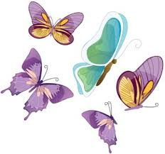 butterfly vector 28 free