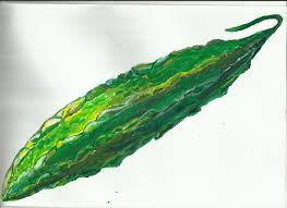 pg 59 drawing fruits and vegetables in colour oca ektah maha